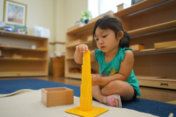 Kid Playing Block